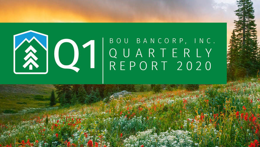 Graphic with the text Q1 2020 Quarterly Report